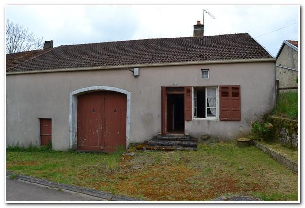 Te renoveren dorpboerderij met tuin en boomgaard, Haute-Marne, Frankrijk