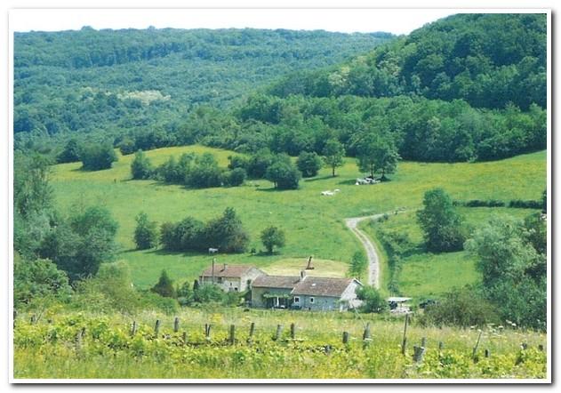 Vrijstaand woonhuis aan beekje met prachtig uitzicht, Haute-Marne, Frankrijk