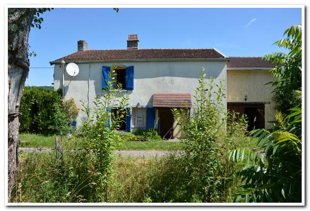 Vrijstaand dorpshuis op mooie rustige lokatie, Haute-Marne, Frankrijk