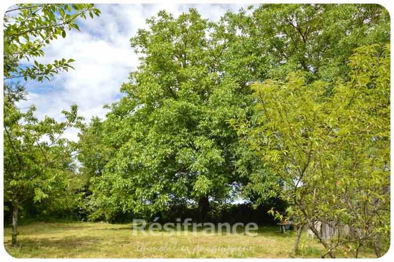 huis_te_koop, Fleurey les Lavoncourt, Haute-Saone
