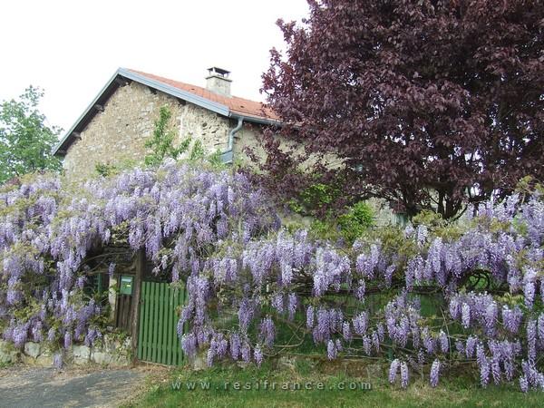 Charmante dorpswoning met tuin, Haute-Marne, Frankrijk